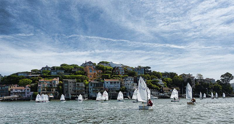 Opti fleet sailing out of Tiburon to be towed out to Berkeley Circle.
