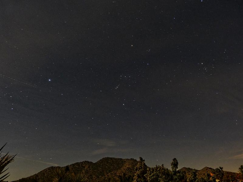 Starry night in Joshua Tree from Black Rock Canyon campground.