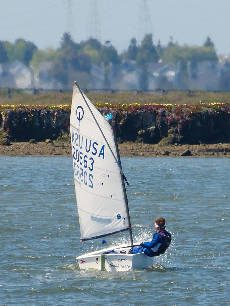 Henry going upwind
