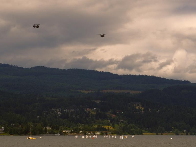 Army copters flying over the regatta