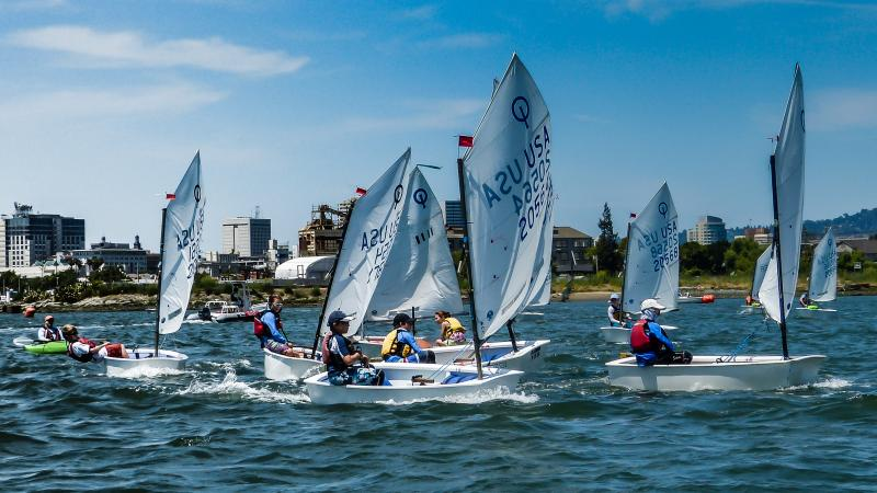 opti's racing on the estuary
