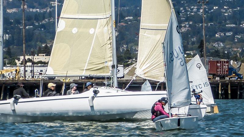 clueless cruisers sailing through the race course