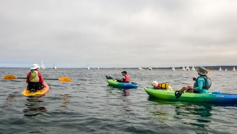 kayaking monterey bay
