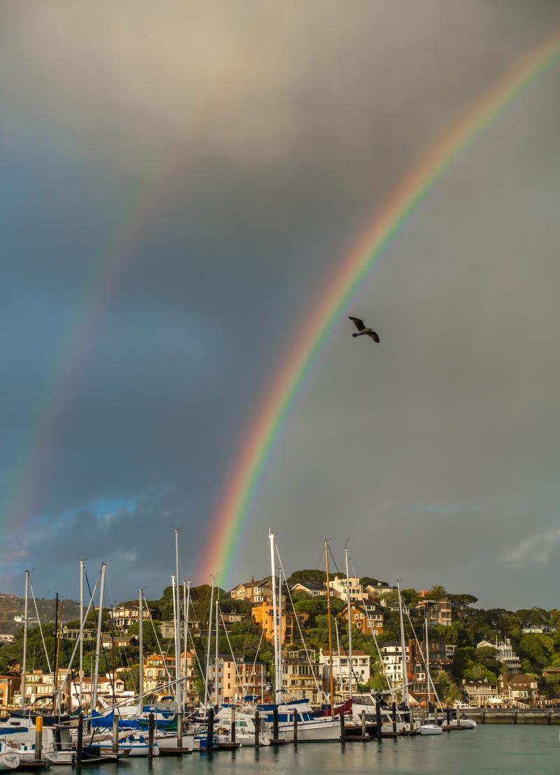Amazing rainbow at regatta conclusion
