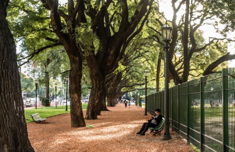 A park somewhere in Recoleta.