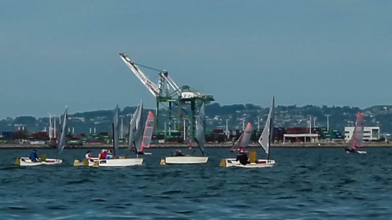 optimists with 29'ers on the same course