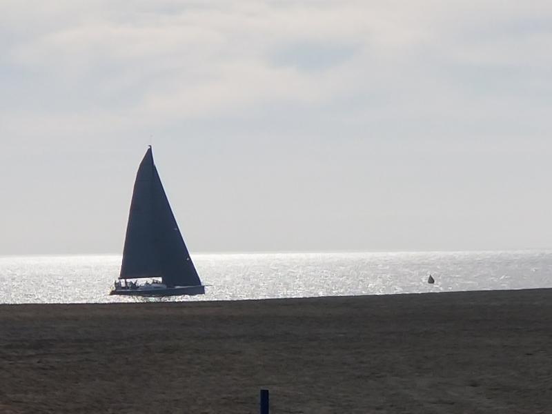 Regatta set their mark right across the beach from Redler's deck.