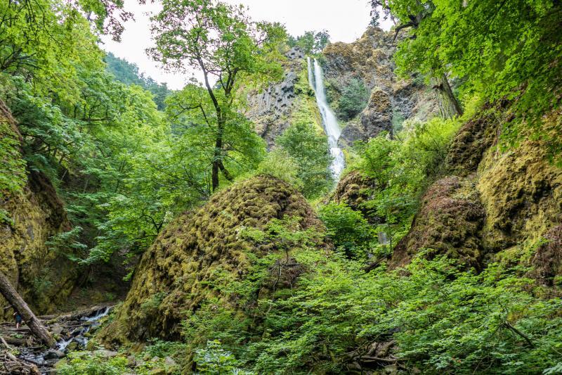 Waterfall in Washington