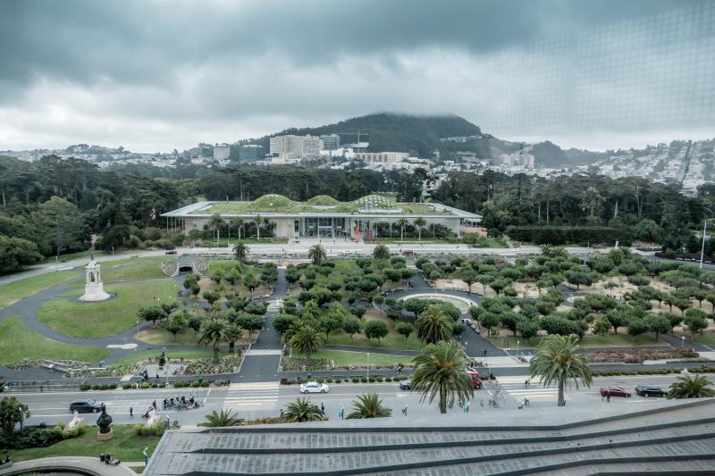 View from atop the DeYoung