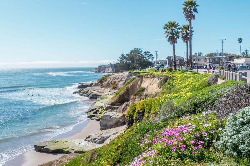 View up the coast at Santa Cruz